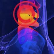 Spine Pain Treatment & Diagnosis